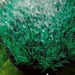 Oase OxyTex CWS 1000 Underwater Biofilter-3