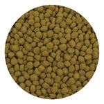 Premium Color Enhancing Fish Food Pellets 2 kg-3
