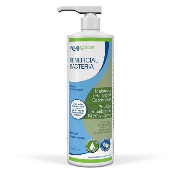 Liquid Beneficial Bacteria for Pond and Water Features, 16-Ounce Bottle