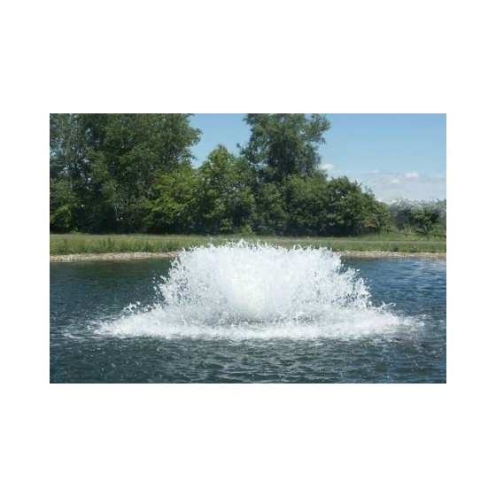 2HP Aerator 3ph (50