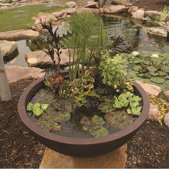 Aquatic Patio Pond Water Garden, 40-Inch Round 3
