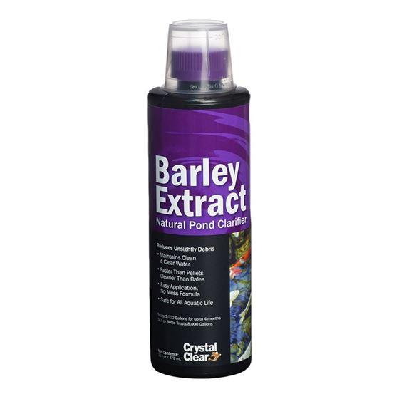Barley Extract Liquid, 16 Ounces