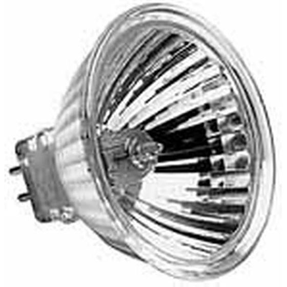 Clear 75W Bulb