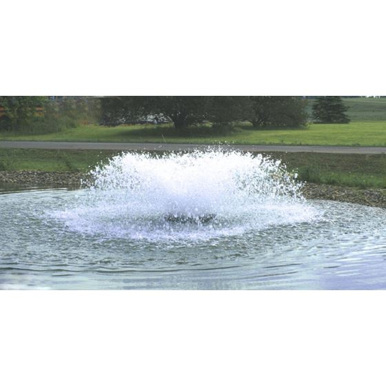 3HP Aerator 3ph (50