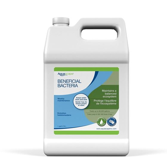 Liquid Beneficial Bacteria for Pond and Water Features, 1-Gallon Bottle