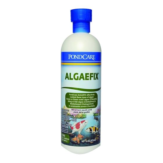 Aquarium Pharmaceuticals PondCare AlgaeFix, 16oz