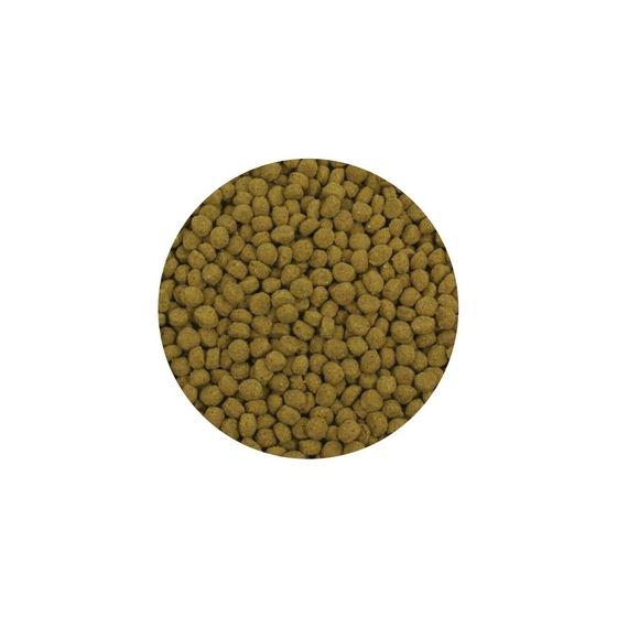 Premium Cold Water Fish Food Pellets 2 kg-3