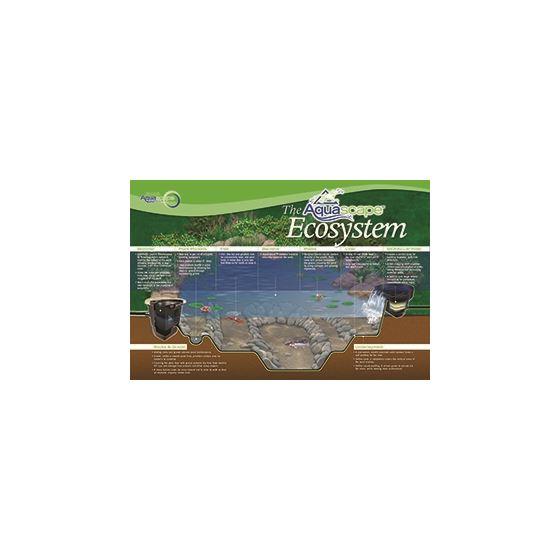 Ecosystem Banner